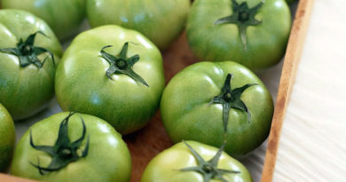 Зеленые помидоры в ящике