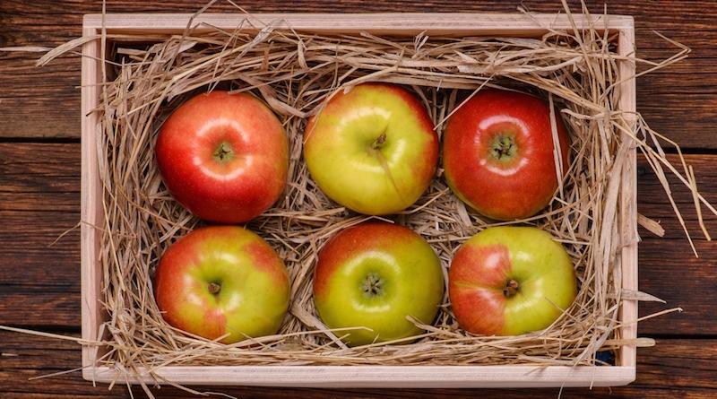 Правильные условия для долгого хранения яблок