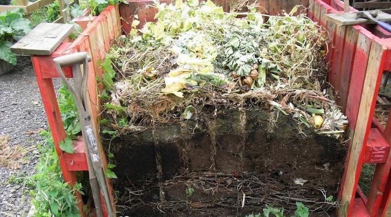 Что не рекомендуется класть в компостную яму