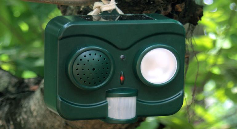 Ультразвуковой отпугиватель птиц для загородного участка