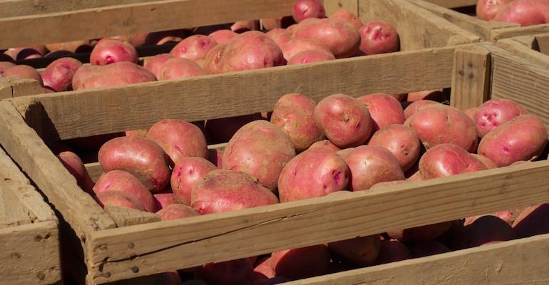 Подготавливаем картошку к длительному хранению