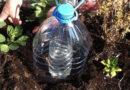 Полезное применение пластиковых бутылок на даче (Часть 10)