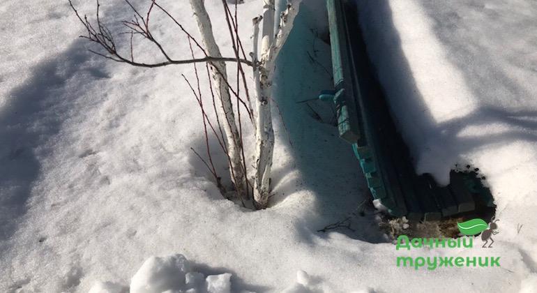 Снег вокруг скамейки тоже растаял быстрее
