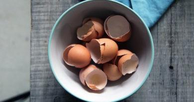 Применение яичной скорлупы в огороде