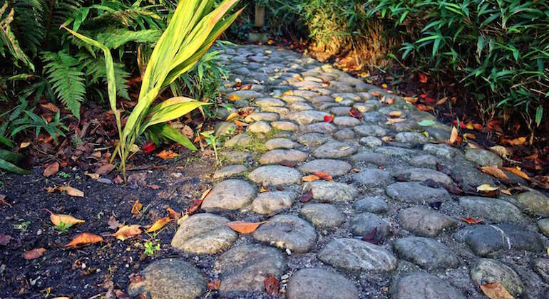 Дорожка из камней между грядок