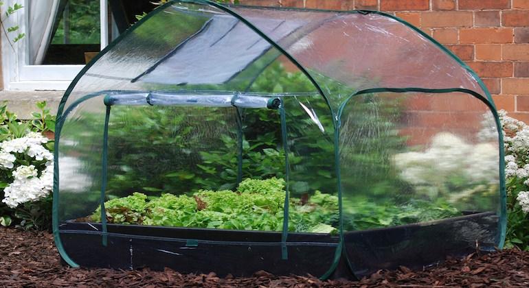 Парник палатка для выращивания зелени