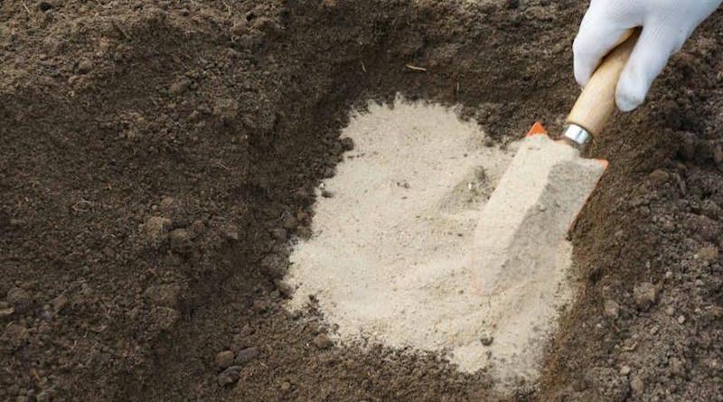 Используем песок с пользой для огорода