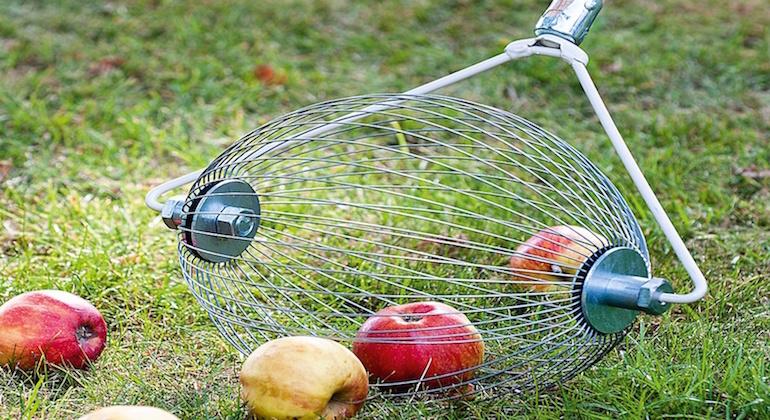 Приспособление для сбора плодов с земли