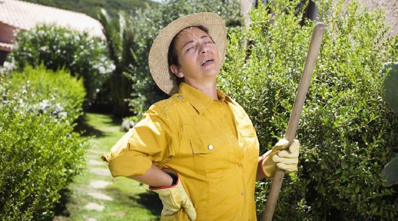 Хитрости, которые помогут защитить спину во время работы в огороде