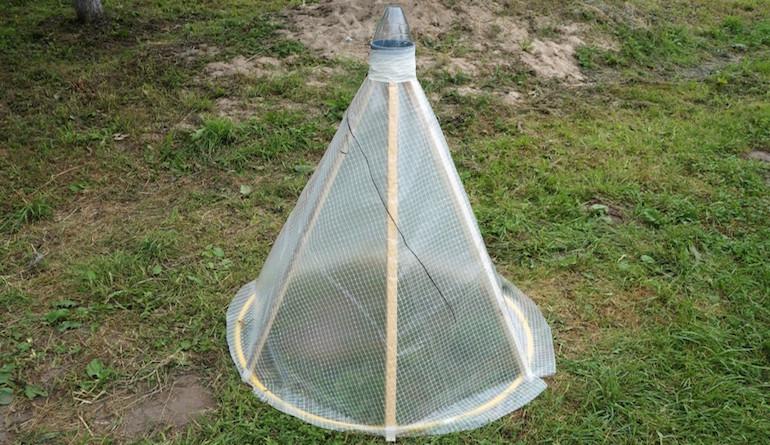 Создаем купол и ловушку