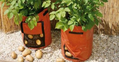Посадка картошки в мешках