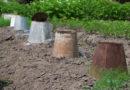 Полезное применение старых металлических ведер на даче