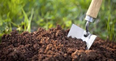 Определяем тип почвы