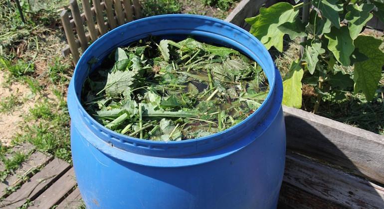 Применение крапивы в огороде